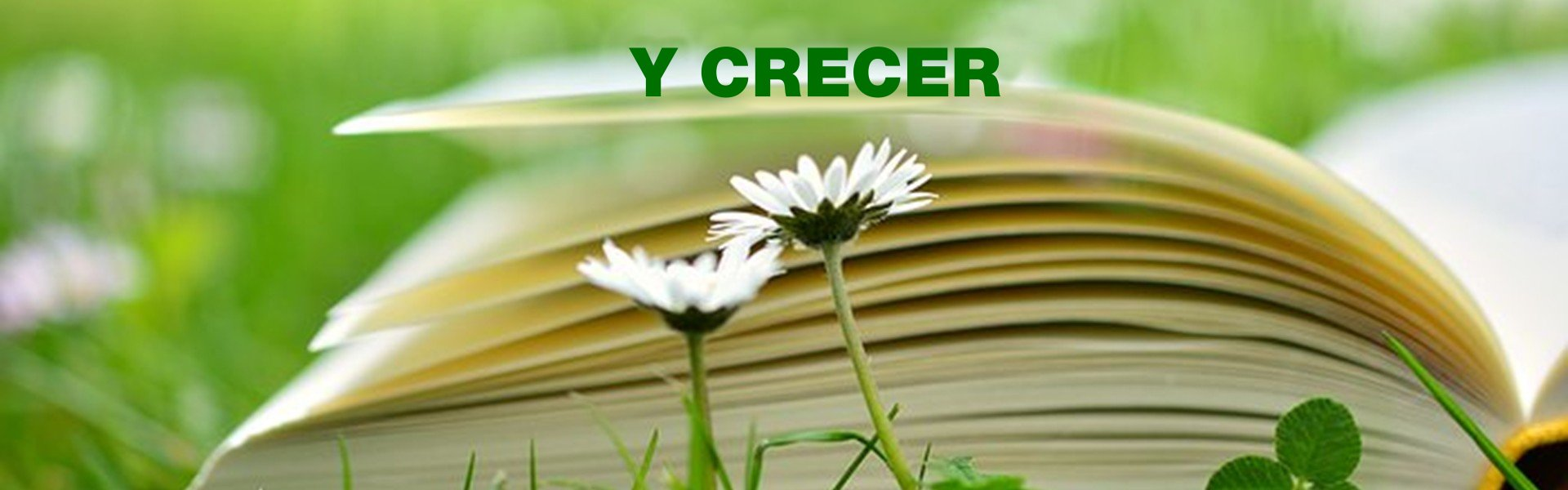 Y CRECER